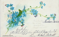 Grusskarte, Blüten, Vergissmeinicht, blau, 1902, Gedicht