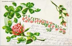Grusskarte, Rose, Kleeblatt, Blumengruss, 1909