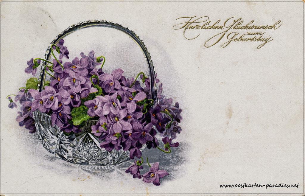 Geburtstagsgrüße,Postkarte Blumenschale violett 1919