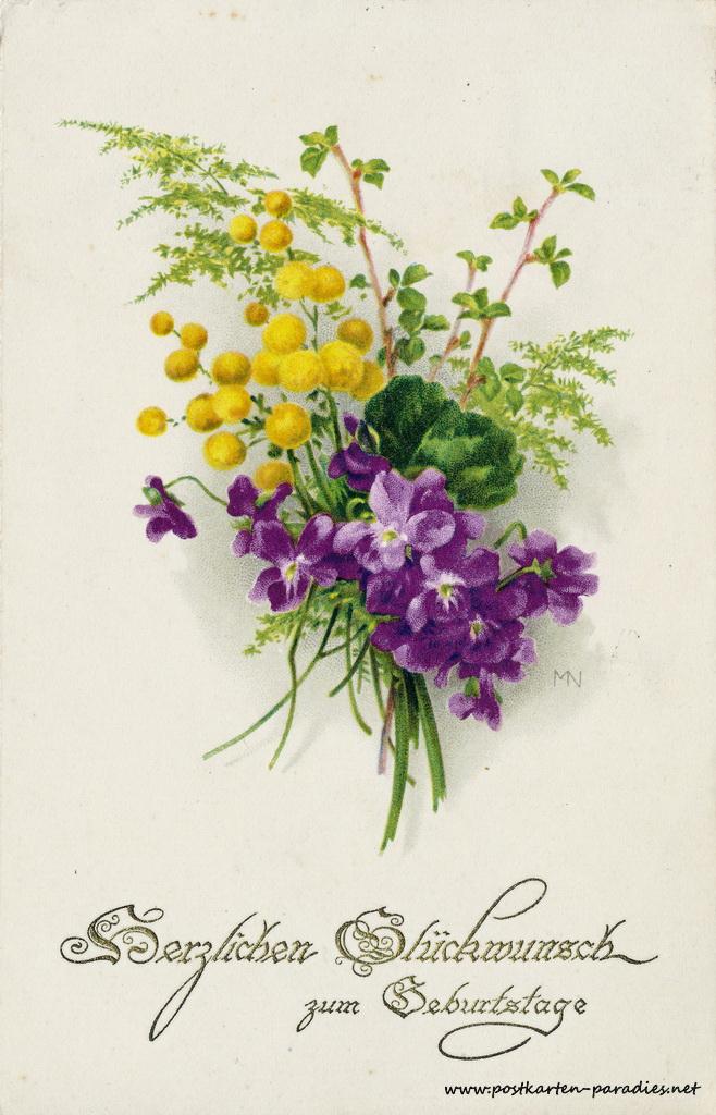 Geburtstagsgrüße,Postkarte violett Mimosen, 1926