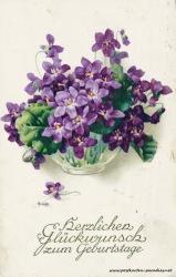 Geburtstagsgrüße,Postkarte Blumenschale violett1924