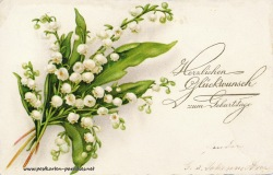 Geburtstagsgrüße,Postkarte Blumen  Maiglöckchen 1929