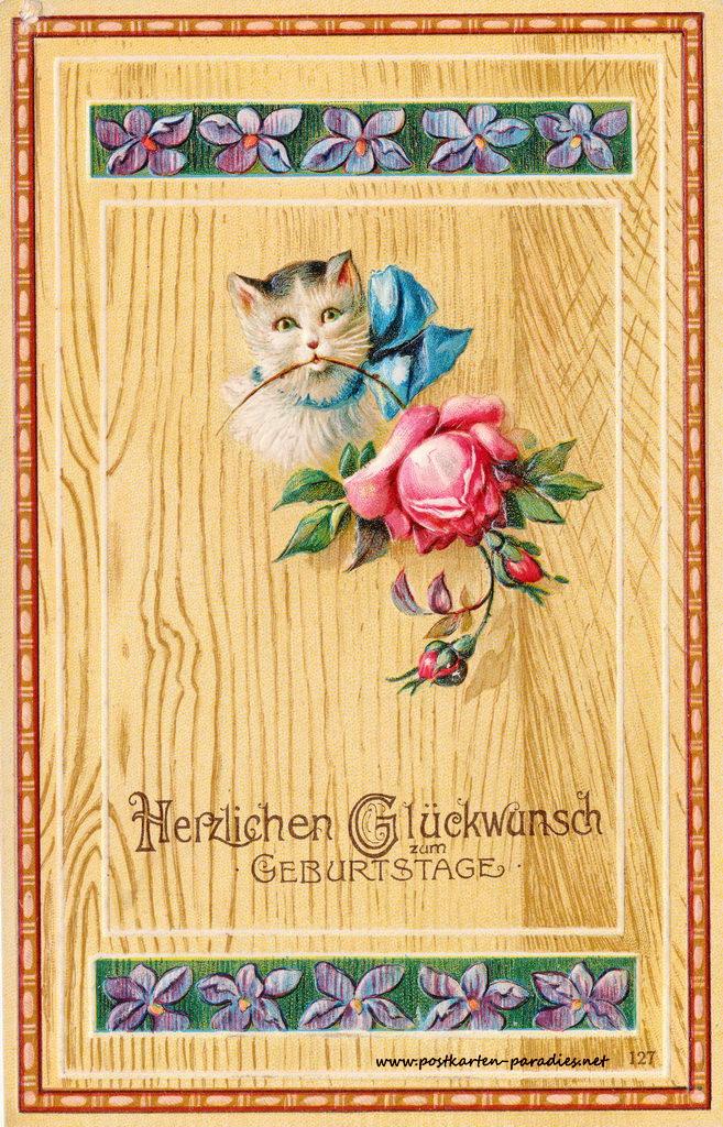 historische Geburtstagskarte Katze, Rose, 1907